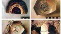 Những mảnh gốm thời Trần, Lê ở Trường Sa