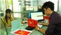 Vụ 'quan xã' làm giả hồ sơ xin cấp sổ đỏ ở Ba Vì (Hà Nội): Hai bị cáo xin giảm nhẹ hình phạt