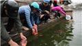 Chùm ảnh: Thả cá chép ngày ông Táo - nét đẹp văn hóa của người Việt