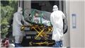 Dịch COVID-19: Thế giới vượt 11,5 triệu ca mắc bệnh