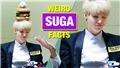 15 sự thật kì quặc của Suga BTS chỉ 'fan ruột' mới biết
