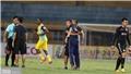 VIDEO: Điểm nhấn vòng 15 V-League 2019