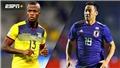 Link xem trực tiếp bóng đá Ecuador đấu với Nhật Bản (06h00, 25/06), Copa America 2019