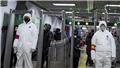 Dịch bệnh viêm phổi do virus corona: Tổng Giám đốc WHO tới Trung Quốc để thảo luận tình hình