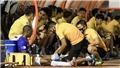 Ngoại binh CLB Hà Nội về nước chờ ngày V League trở lại