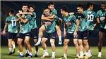 Cập nhật trực tiếp bóng đá Việt Nam: Thanh Hóa vs Viettel. TPHCM vs Hà Tĩnh