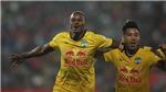 VFF sẽ quyết định phương án thi đấu V-League 2022