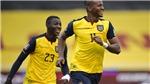 TRỰC TIẾP bóng đá Colombia vs Ecuador, Copa America 2021. Xem trực tiếp Bóng đá TV