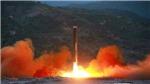 Tình báo Hàn Quốc: Triều Tiên vẫn tiếp tục các hoạt động hạt nhân, tên lửa