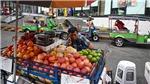 Thái Lan phân bổ gần 600 triệu USD để phát triển Hành lang kinh tế phía Đông
