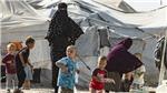 Bài toán hồi hương công dân nhập IS hóc búa với liên minh quốc tế chống IS