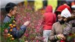 Dự báo thời tiết: Không khí lạnh tăng cường gây mưa rét ở Bắc Bộ