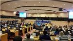EU coi trọng vai trò, vị thế quốc tế và quan hệ đối tác hợp tác toàn diện với Việt Nam