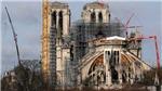 Tái thiết Nhà thờ Đức Bà Paris: Đổ bê tông hay đốn 2.000 cây sồi?