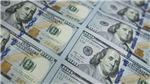 Tỷ trọng đồng USD trong dự trữ ngoại hối toàn cầu giảm xuống mức thấp nhất trong 25 năm