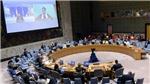 Hội đồng Bảo an LHQ 'nhìn lại mình' sau 15 tháng bị Covid-19 tác động