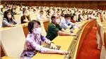 Kỳ họp thứ nhất, Quốc hội khóa XV: Tiến hành quy trình bầu Chủ tịch nước và Thủ tướng Chính phủ