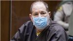 'Ông trùm' giải trí Harvey Weinstein bị bác đơn kháng cáo