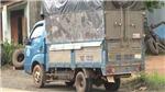 Bắt giữ xe tải cùng 7 người trong thùng xe trốn chốt kiểm dịch Covid-19