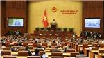 Những nội dung chính kỳ họp thứ 2, Quốc hội khóa XV