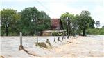 Cảnh báo triều cường khu vực Nam Bộ, lũ trên các sông Bắc Bộ và từ Quảng Bình đến Bình Định