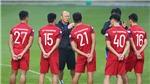 Chuyên gia Đoàn Minh Xương: 'Thầy trò HLV Park Hang Seo gặp nhau cuối năm'