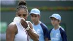 Serena Williams và thành trì lung lay