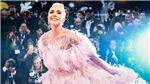Đừng lo Oscar 2019 không có MC, Queen, Lady Gaga... sẽ khuấy động lễ trao giải