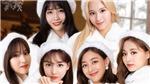 Tinh thần Giáng sinh của fan lên cao khi xem những bức ảnh này của Twice
