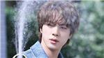 BTS: Phản ứng ngọt ngào của Jin khi fan thấy xấu hổ