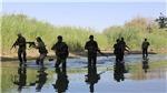 Nga cáo buộc Mỹ sử dụng bom phốt-pho khi không kích tại bờ Đông sông Euphrates