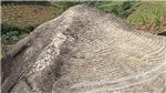 Tìm thấy bức chạm khắc đá lớn hơn 900 năm tuổi tại Trung Quốc