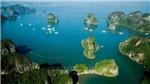 Quảng Ninh: Sớm xem xét chính sách hỗ trợ các doanh nghiệp kinh doanh tàu nghỉ đêm trên vịnh Hạ Long