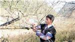 Sơn La thực hiện cấp tem chứng nhận cho giống đào rừng do người dân trồng