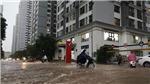 Trong 2-3 ngày tới, Tây Nguyên và Nam Bộ có dông nhiều nơi, nguy cơ lốc xoáy và gió giật mạnh