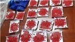 Bắt giữ hai đối tượng mua bán trái phép 28.000 viên ma túy tổng hợp