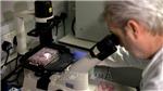 Khả năng miễn dịch với COVID-19 có thể biến mất sau vài tháng