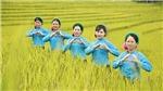 Quảng Ninh: Khai mạc lễ hội văn hóa, thể thao dân tộc Sán Chỉ - Mùa vàng vùng cao Đại Dực
