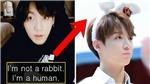 ARMY và BTS 'lật tẩy' những lời nói dối trắng trợn của Jungkook