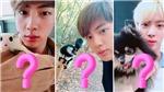 Loài vật mà Jin BTS muốn nuôi khiến ARMY bất ngờ