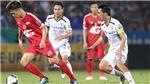 Bóng đá Việt Nam hôm nay: Trọng tài mắc lỗi lớn với Nam Định. HAGL sẽ chơi tốt ởsân nhà