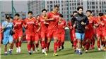 Bóng đá Việt Nam hôm nay: Tuyển Việt Nam tập tại2 địa điểm ởUAE