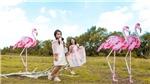 Đạo diễn Nguyễn Hưng Phúc: Tổ chức Pink Garden Show cho thiếu nhi dịp Trung thu