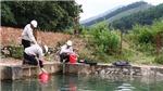 Tư vấn, xét nghiệm nước miễn phí cho người dân chịu ảnh hưởng của sự cố ô nhiễm nước sông Đà
