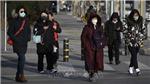 Dịch bệnh viêm phổi do virus corona: Thêm một thành phố tại Trung Quốc ngừng hoàn toàn giao thông công cộng