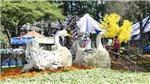 Hội hoa Xuân Thành phố Hồ Chí Minh Canh Tý 2020: Trưng bày đa dạng, nhiều hoạt động đặc sắc