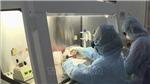 Liệu pháp truyền huyết tương chỉ có hiệu quả hạn chế trong điều trị COVID-19