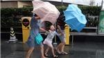 Trung Quốc sơ tán người dân tại Thượng Hải vì bão Ampil