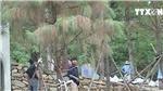 VIDEO: Huyện Sóc Sơn thông tin về bệt phủ trên đất lâm nghiệp