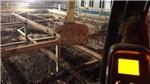 Hà Nội: Phát hiện 1 quả bom tại công trình xây dựng số 15 phố Cửa Bắc